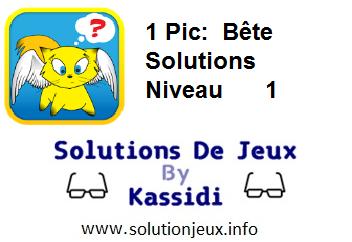 1 pic bête niveau 1 solutions