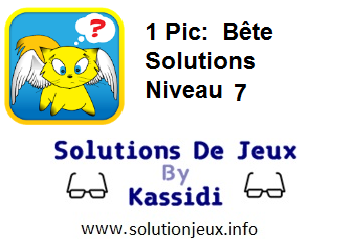 1 pic bête niveau 7 solutions