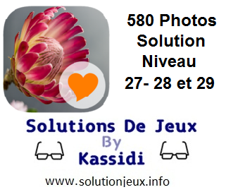 580 Photos Solution Niveau 27-28-29
