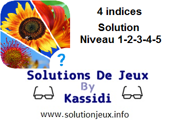 Solution 2 indices niveau 1-2-3-4-5