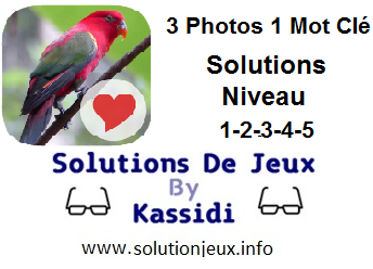 3 photos 1 mot clé niveau 1-2-3-4-5 solutions