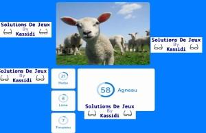 solution 94 image agneaux