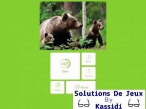 solution 94 image ours avec ses petits