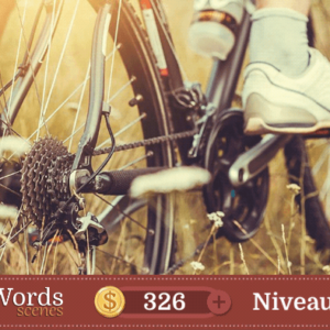 Pixwords Scenes Niveau 209