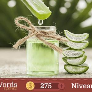 Pixwords Scenes Niveau 238