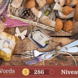 Pixwords Scenes Niveau 271