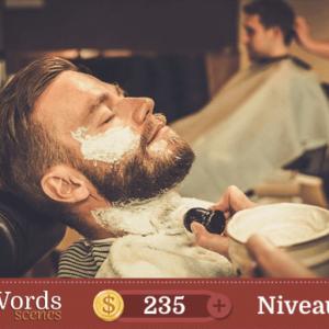 Pixwords Scenes Niveau 291