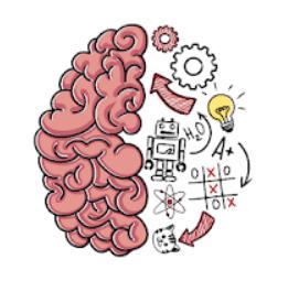 Solution Brain Test