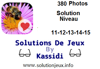 380 Photos niveau 11-12-13-14-15 solution