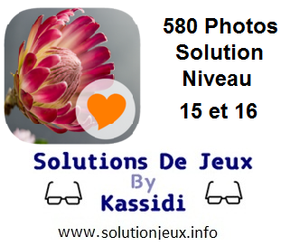 580 Photos Solution Niveau 15 et 16