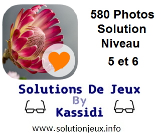 580 Photos Solution Niveau 5 et 6