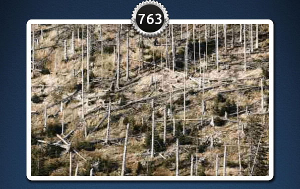 picwords 2 autres nature 763