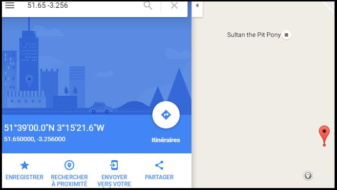 Google maps poney