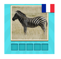 solution animaux quiz