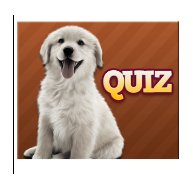 chiens races quiz solution