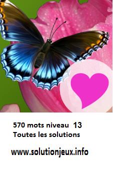 solution 570 mots Niveau 13